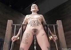 Leigh Raven is tattooed tied up and machine fucked