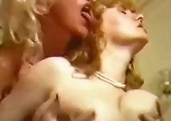 Search Lynn Armitage Porn